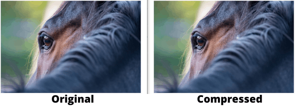reduce image size without losing quality online